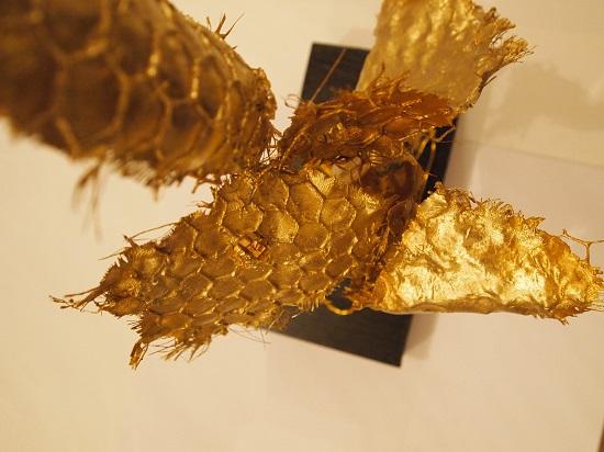 Laëtitia- Ambroselli-Big-Five-2012